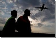 В Шереметьево опровергли появление в аэропорту «собак-психотерапевтов»