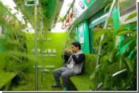 В китайском метро запустили вагон с садом внутри