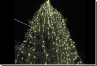 В Риме обнаружили самую уродливую рождественскую елку в мире