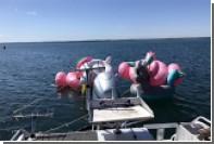 Поклонниц Instagram унесло в открытое море на надувных фламинго