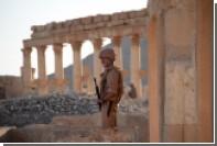 СМИ сообщили о прорыве боевиков ИГ в Пальмиру